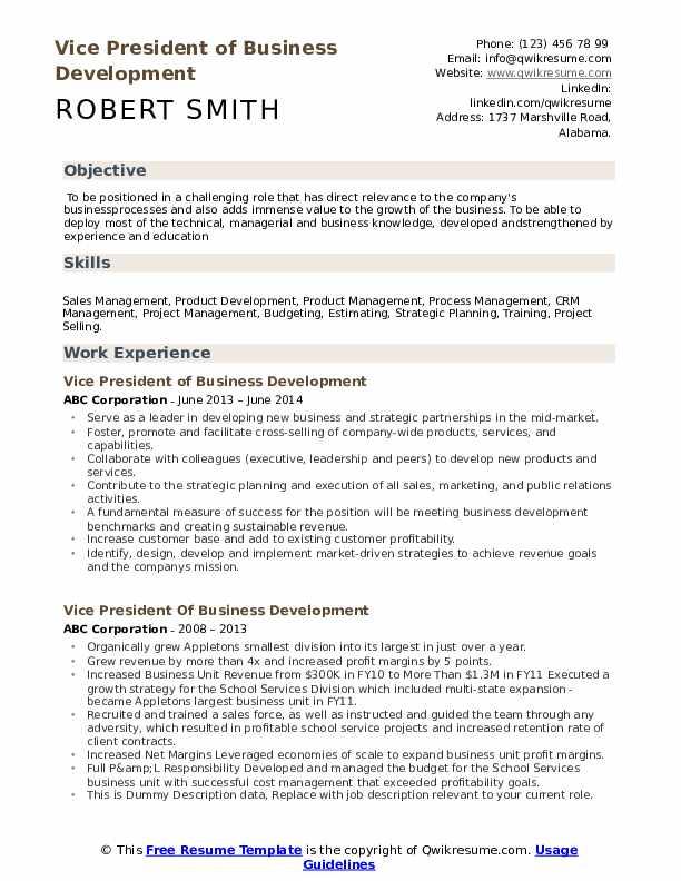 Vice President Of Business Development Resume example