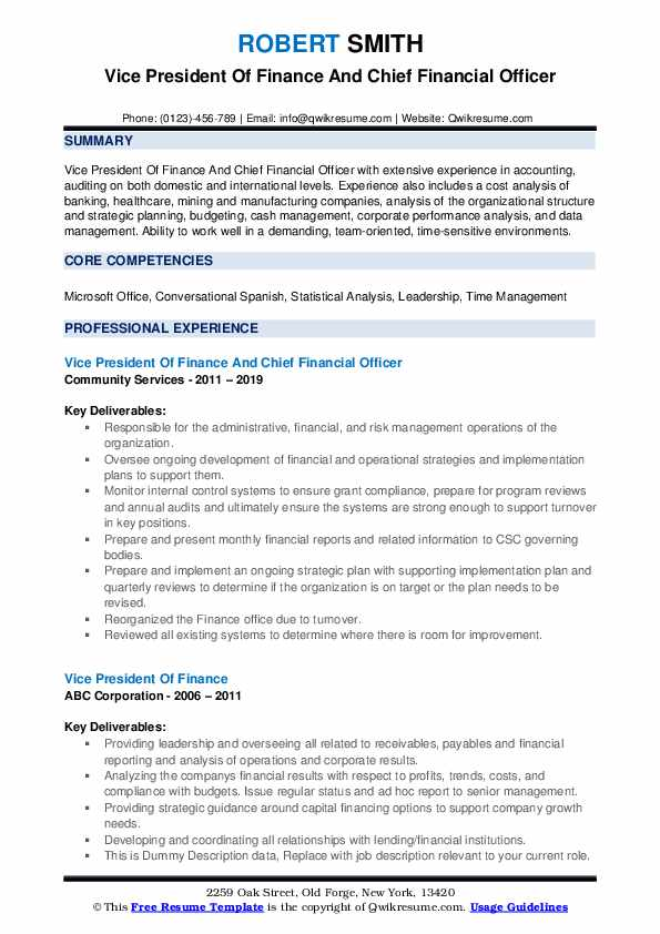 Vice President Of Finance And Chief Financial Officer Resume Example