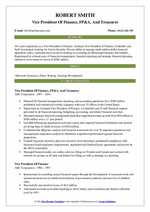 Vice President Of Finance, FP&A, And Treasurer Resume Example