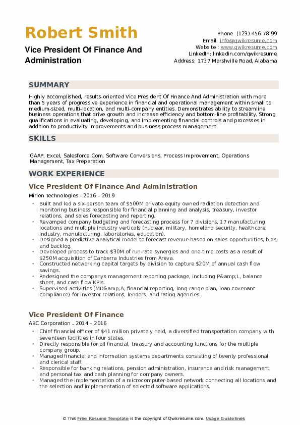 Vice President Of Finance Resume example