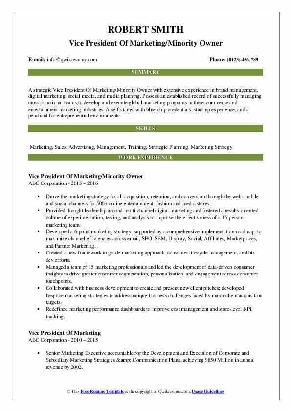 Vice President Of Marketing/Minority Owner Resume Model
