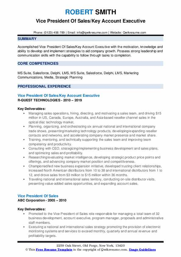 Vice President Of Sales/Key Account Executive Resume Template