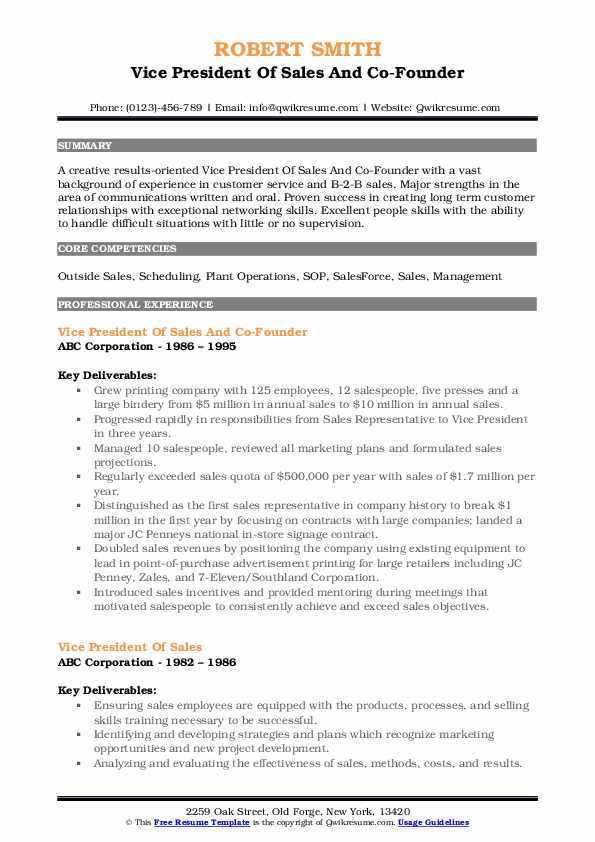 Vice President Of Sales And Co-Founder Resume Model