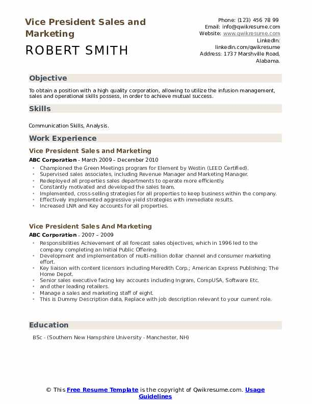 Vice President Sales And Marketing Resume example
