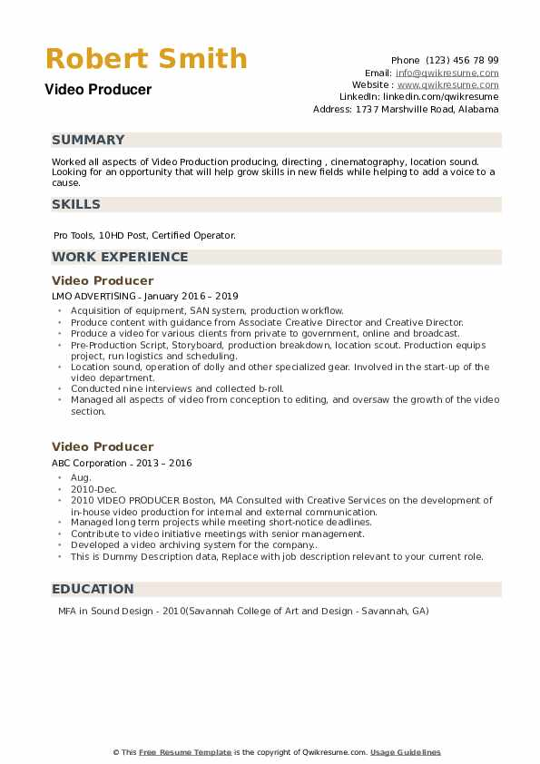 Video Producer Resume example