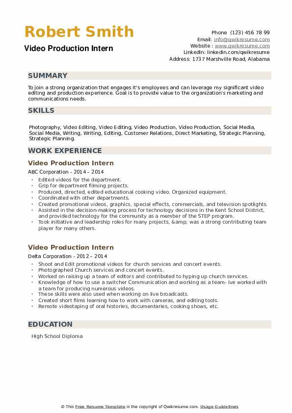 Video Production Intern Resume example
