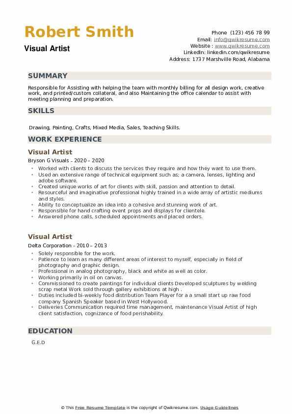 Visual Artist Resume example