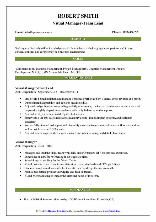 Visual Manager-Team Lead Resume Format