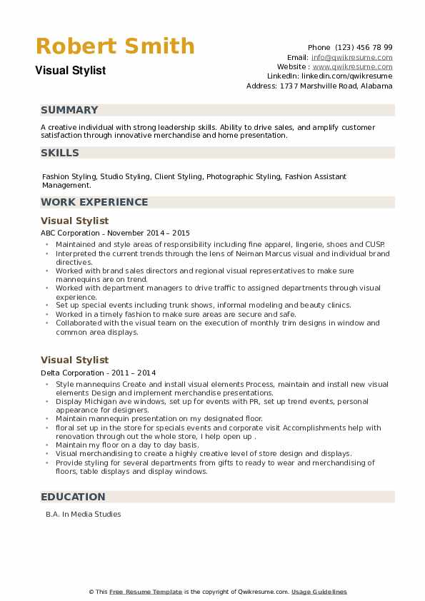 Visual Stylist Resume example