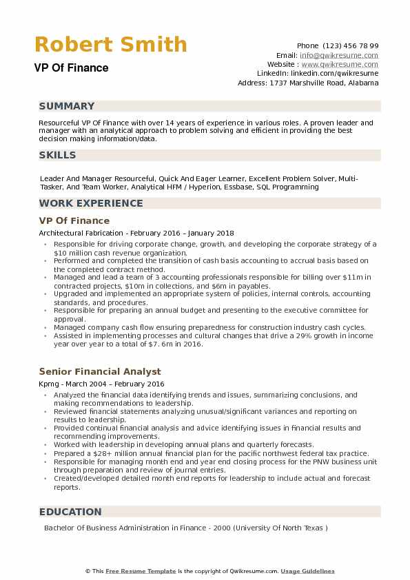 VP Of Finance Resume example
