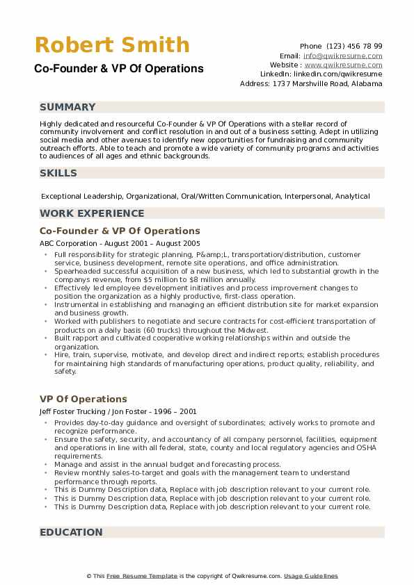 Vp Of Operations Resume example
