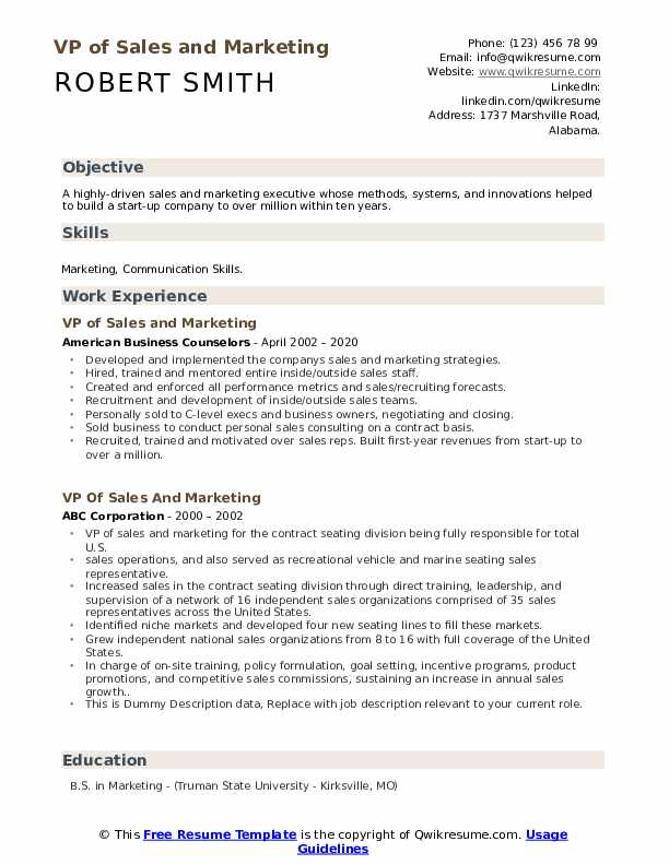 VP of Sales And Marketing Resume example