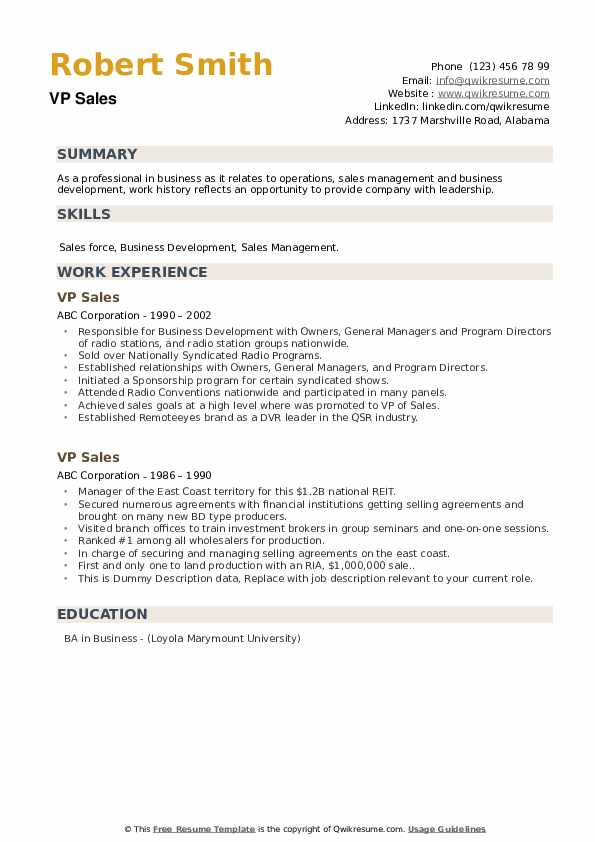 VP Sales Resume example