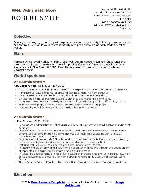Web Administrator Resume example