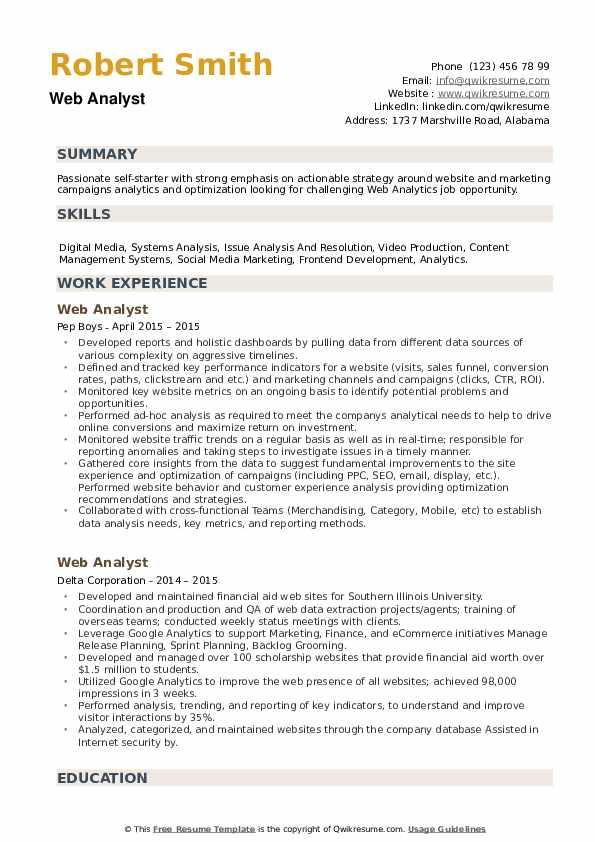 Web Analyst Resume example