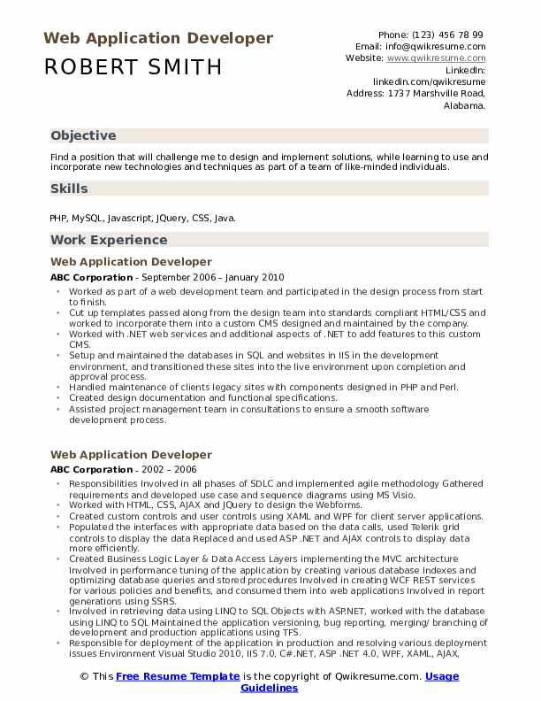 Web Application Developer Resume Example