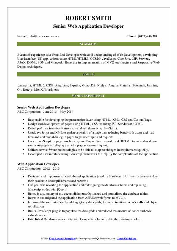 Senior Web Application Developer Resume Format