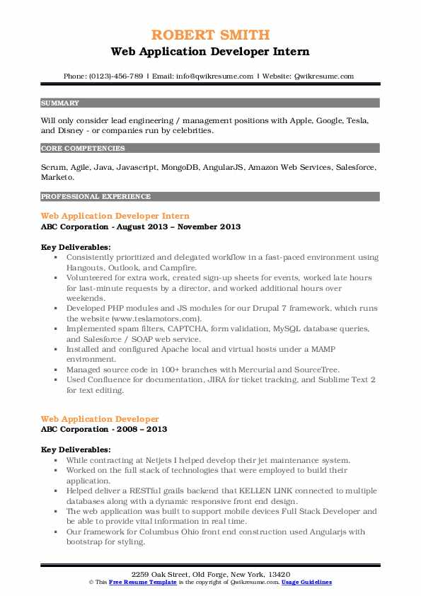 Web Application Developer Intern Resume Example