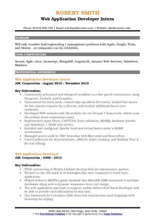 Web Application Developer Intern Resume Sample