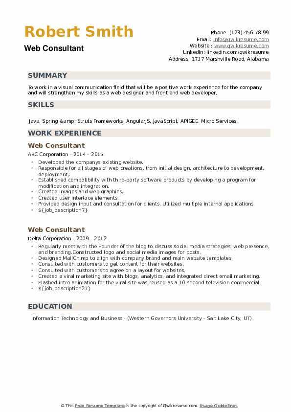 Web Consultant Resume example