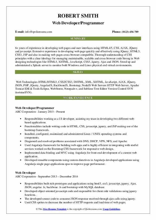 Web Developer/Programmer Resume Format