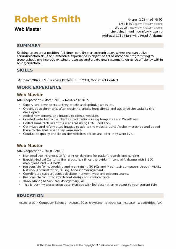 Web Master Resume example