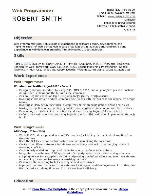 Web Programmer Resume Format