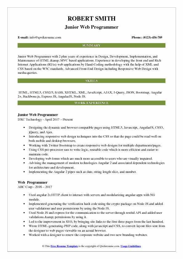Junior Web Programmer Resume Sample