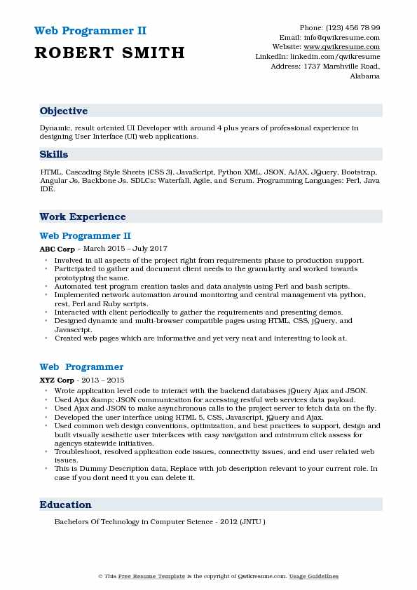 Web Programmer II Resume Example