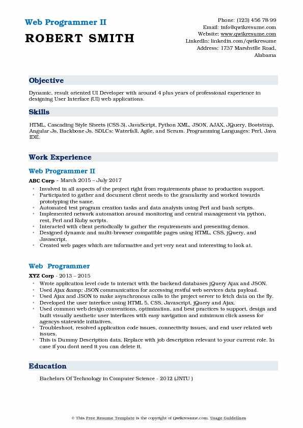 Web Programmer II Resume Sample