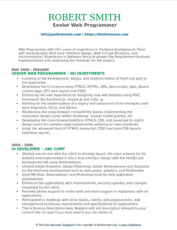 Senior Web Programmer Resume Format