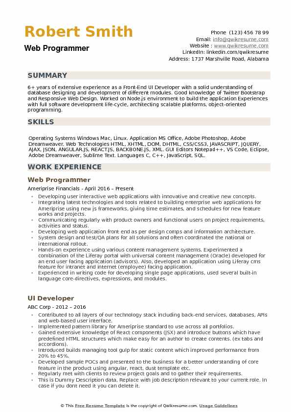 Analytics Implementation Developer Resume