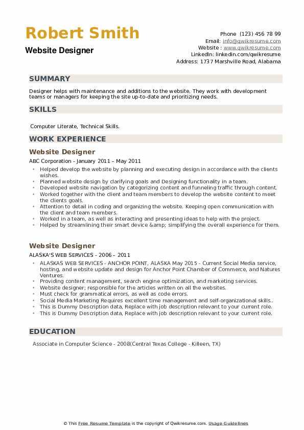 Website Designer Resume example
