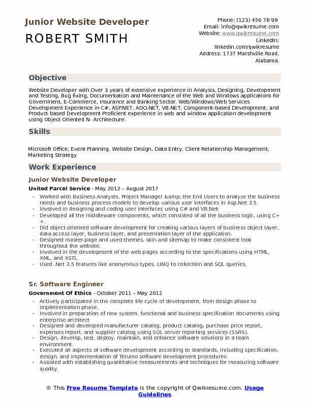 Junior Website Developer Resume Format