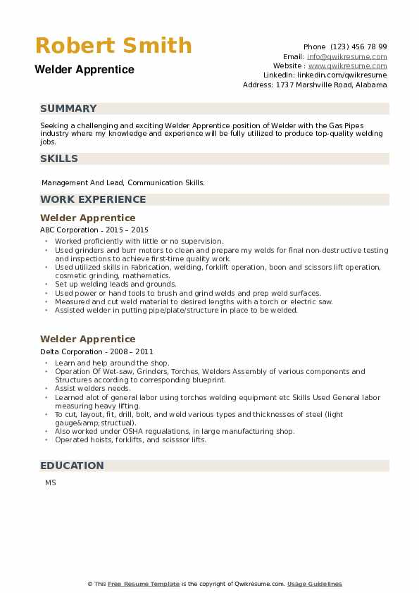 Welder Apprentice Resume example