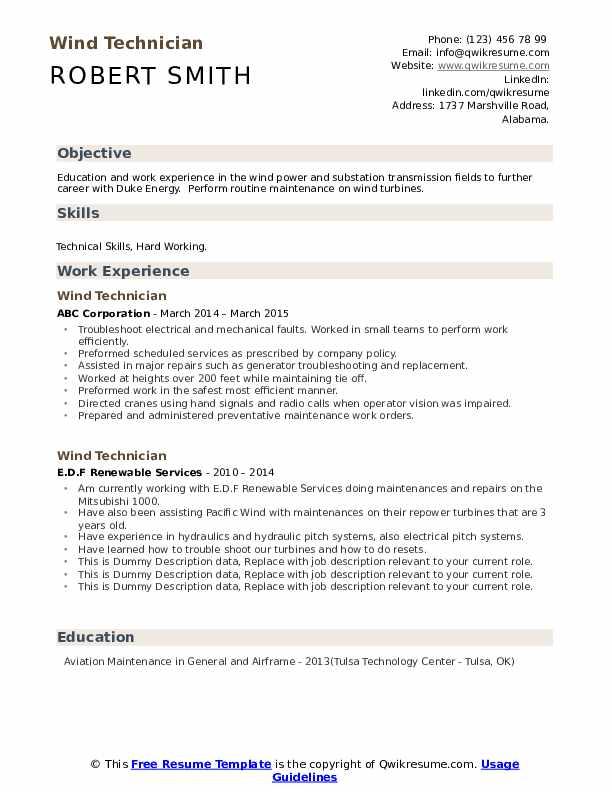 Wind Technician Resume example