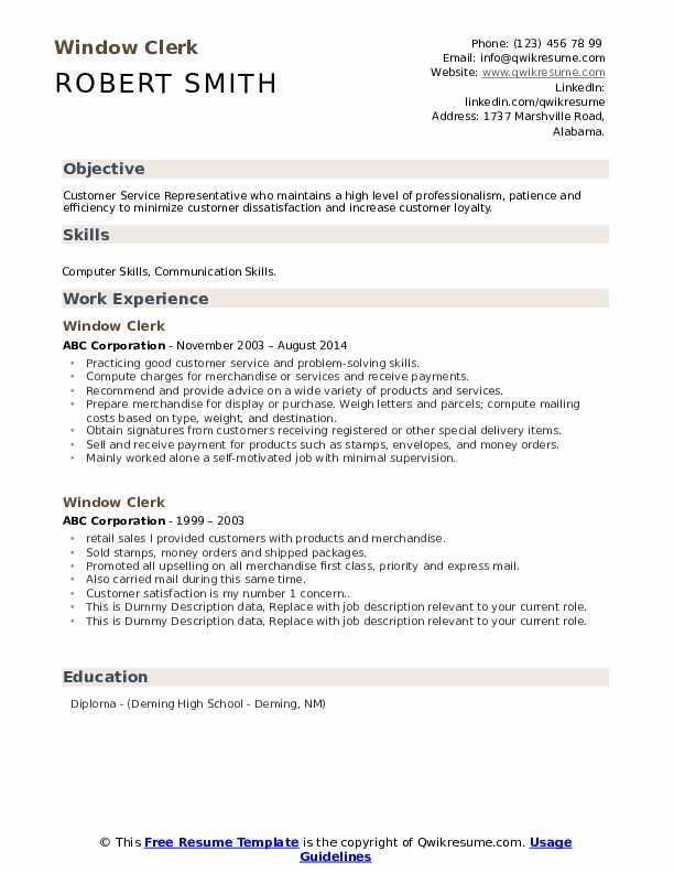 Window Clerk Resume example
