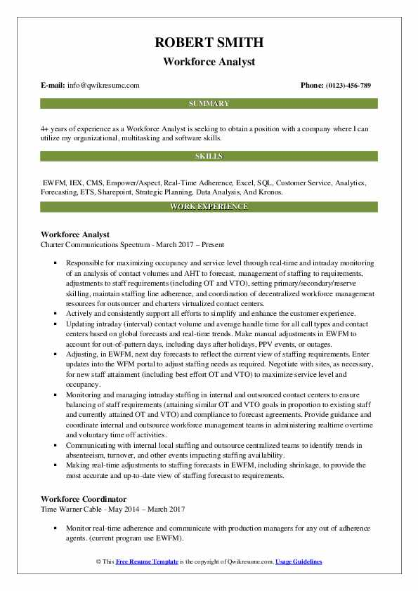 Workforce Analyst Resume Template