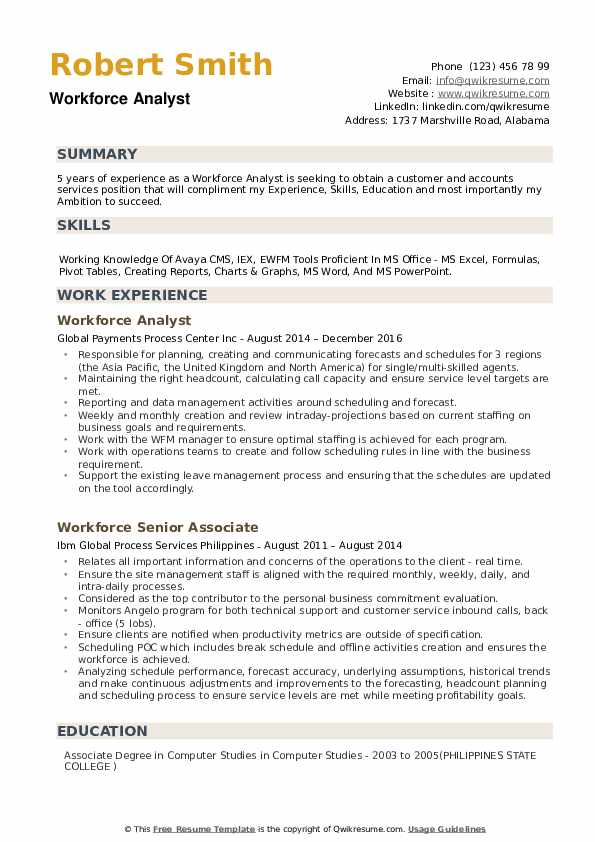 Workforce Analyst Resume example