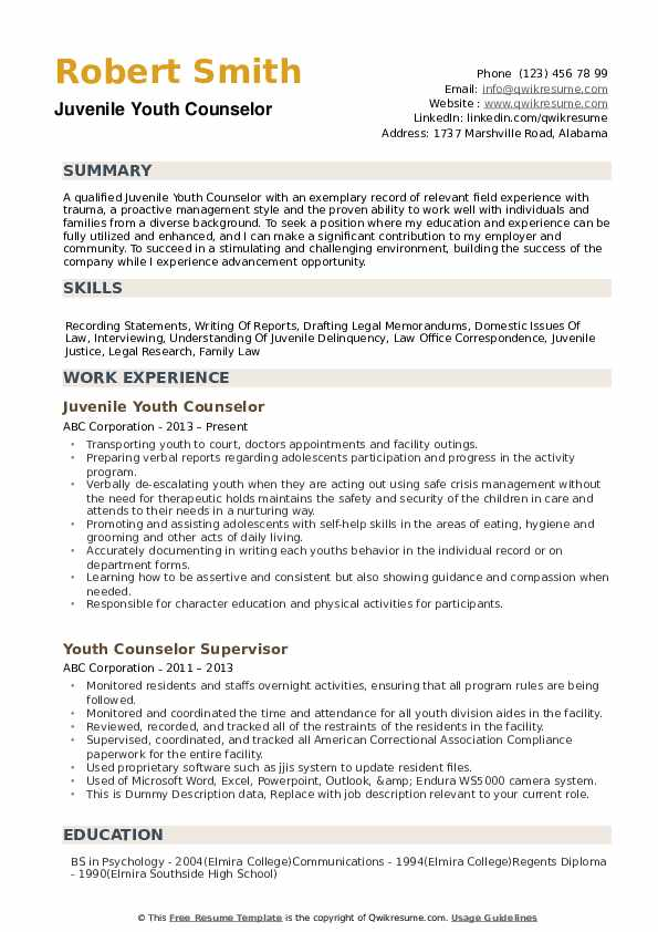 Youth Counselor Resume example